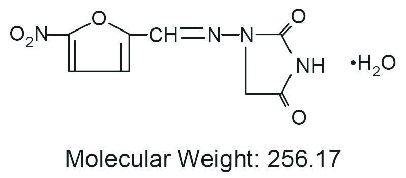 molecule nitrofurantoin